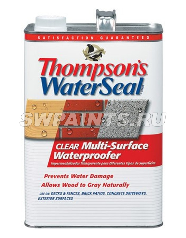 Thompsons WaterSeal Clear Multi-Surface Waterproofer